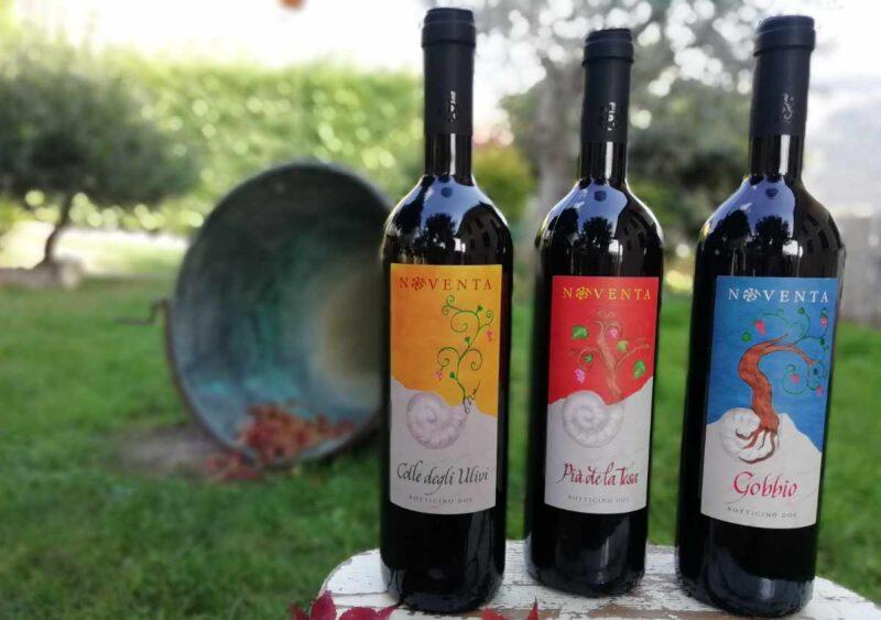 migliori vini migliore vino italiano